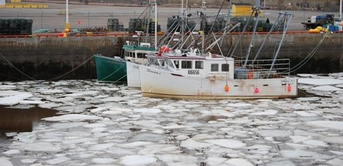 Ice at the port in my city.