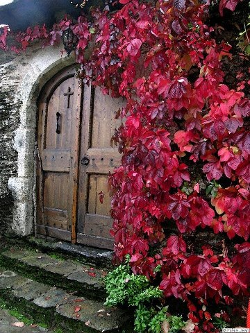 The doors of repentance do Thou open unto me, O Giver of life!
